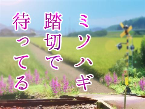 ミソハギ踏切で待ってる~ゲーム画面1