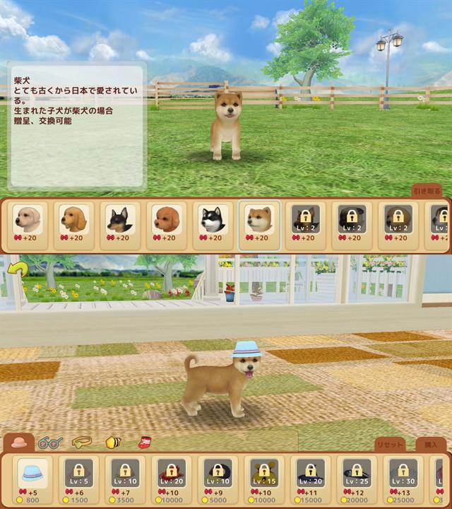 動物育成ゲームアプリ画面1-1