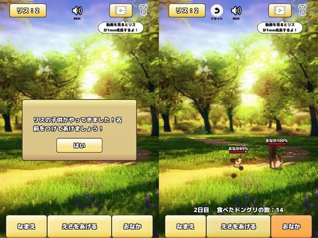 動物育成ゲームアプリ画面11-2