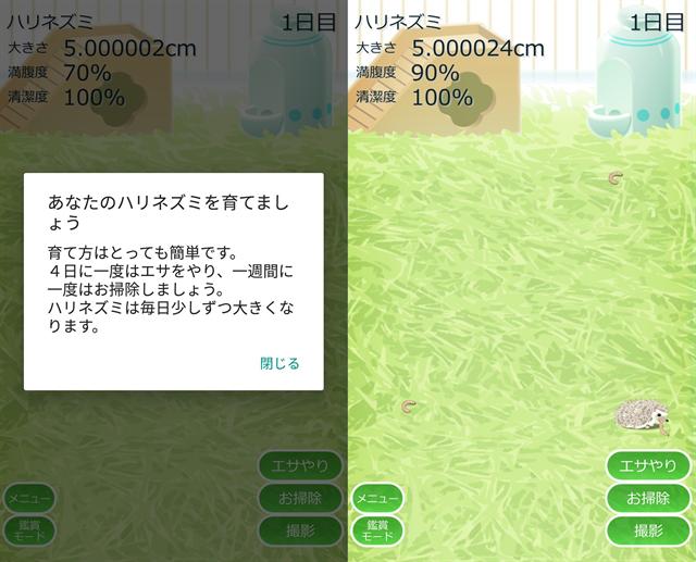 動物育成ゲームアプリ画面14-1