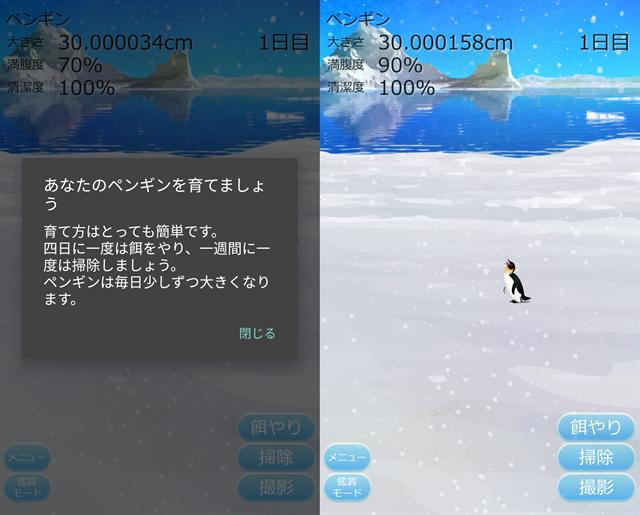 動物育成ゲームアプリ画面16-1