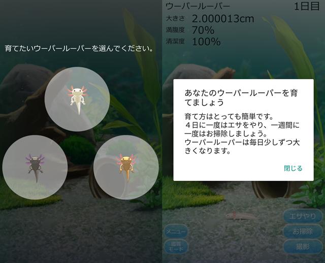 動物育成ゲームアプリ画面18-1