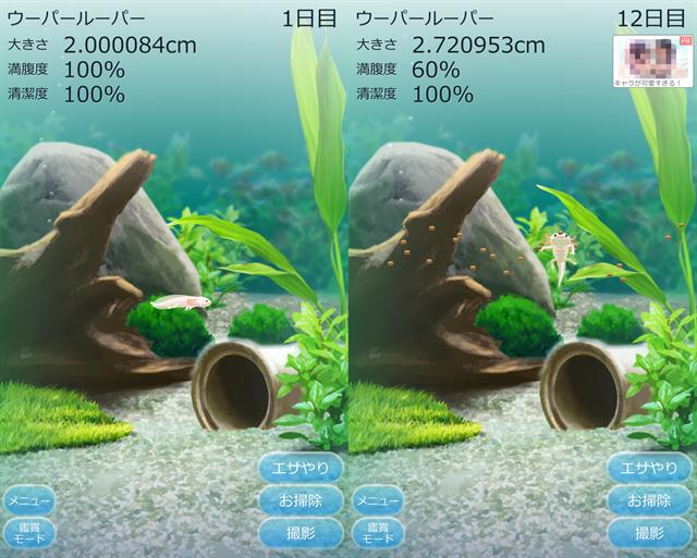 動物育成ゲームアプリ画面18-2