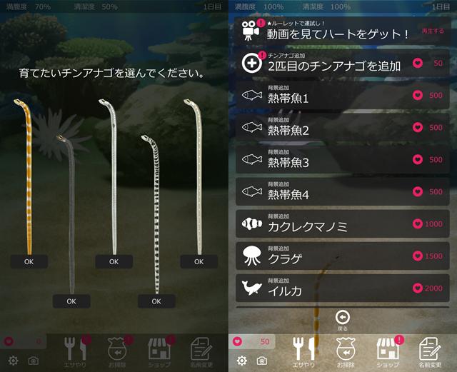 動物育成ゲームアプリ画面19-1