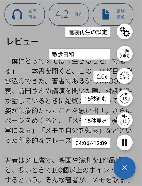 flier画面~フライヤーレビュー6